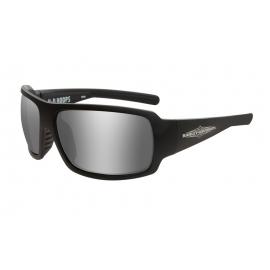HAHPS02 H-D GLASSES TWIN Smoke Grey Matte Grey Frame