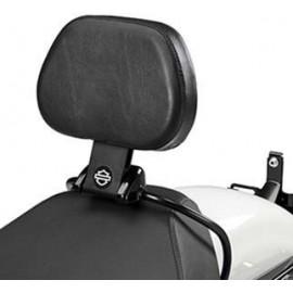 Quick-Release Rider Backrest