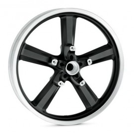 5-Spoke Cast Aluminum Wheel